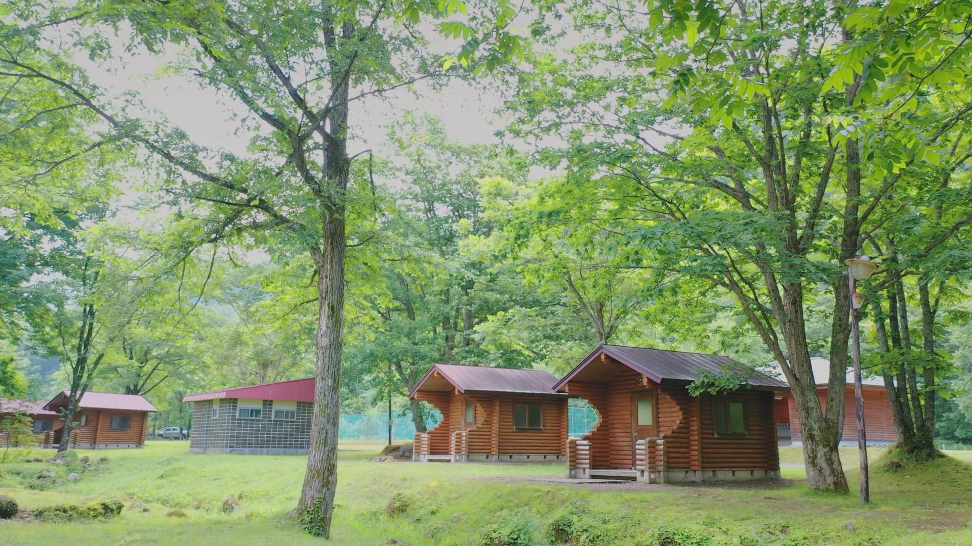 キャンプは子供にとって自然の教科書